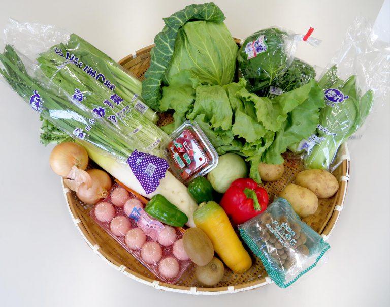 野菜セット【米あり】